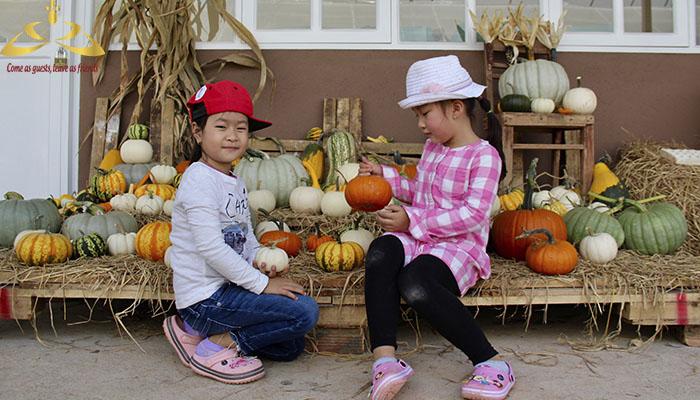 Các bạn nhỏ rất thích thú khi được tham quan nông trại vườn bí khổng lồ Đà Lạt