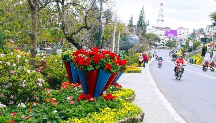 Festival hoa