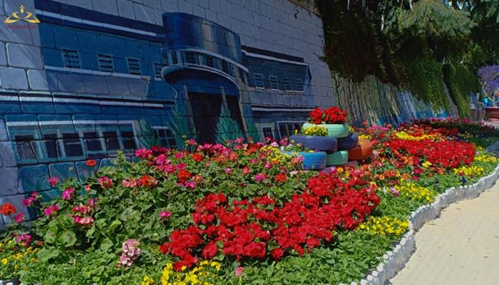trồng hoa và vé tranh tường để chuẩn bị Festival
