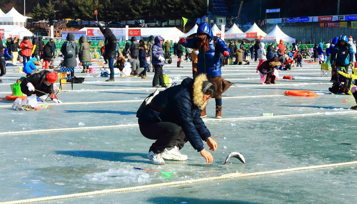 Lễ hội câu cá hồi tại Sancheoneo Hwacheon