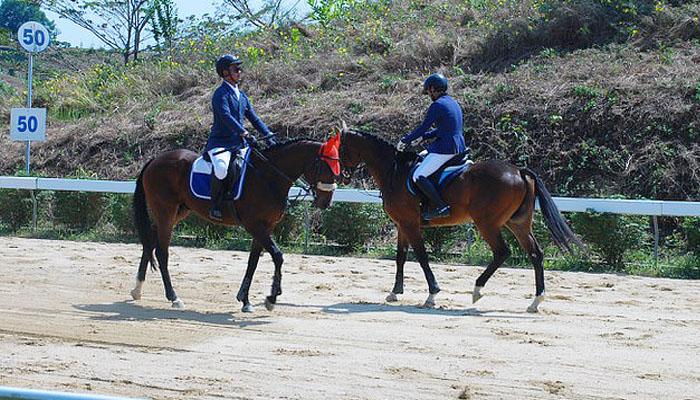 các vận động viên trình diễn ngựa