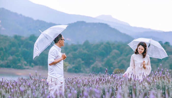 Khu du lịch Lavender – Điểm du lịch mới ở Đà Lạt thưởng thức sự yên tĩnh nhẹ nhàng