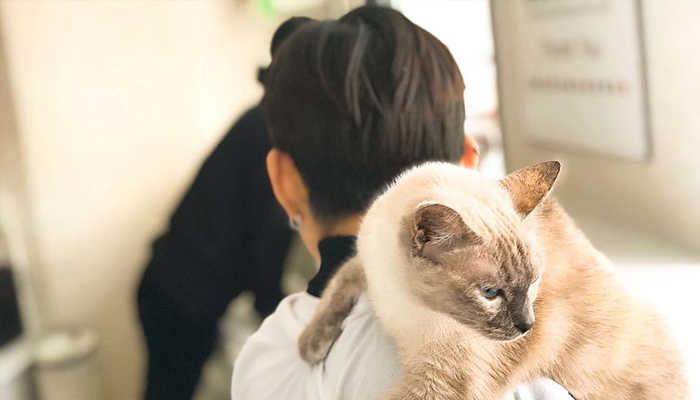 Petcorner - quán cà phê thú cưng Đà Lạt thú vị