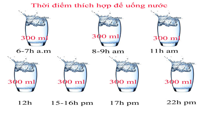 Uống nước dúng cách đóng vai trò quang trọng trong việc nâng cao sức khỏe
