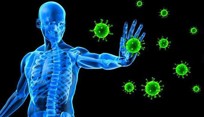 Hệ miễn dịch là gì?